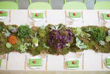 Events: KM Wedding / by Susan L. Greig