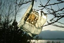 Reduce! Reuse! Recycle! / by Elizabeth Vignali