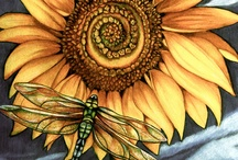 ♥Sunflowers♥ / Because they're bright and pretty.. / by Catrina Waters