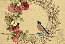 Bird Art / by Anne Edenloff