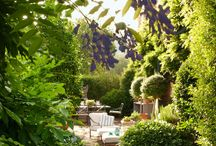 Lush / These gardens and outdoor spaces are perfection! / by Horton Design Associates