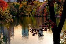 NEW YORK, NEW YORK / by Bobbie Evingham