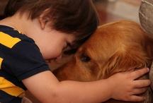 I LOVE Animals.  / by Brianna Thomas
