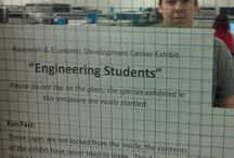 Engineering / Ah, the life of an engineer.... / by Britany Chamberlain