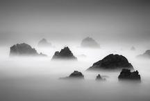 Landscape / by Miguel A. Arranz