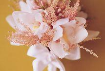 Wedding Flowers / by Samantha Hagans