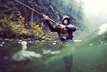 Fish / by Summer Elizabeth-Ann