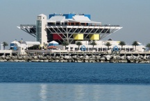 St. Petersburg Views / by 2012 Tampa