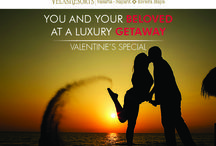 Valentine's Day Special / YOU AND YOUR BELOVED AT A LUXURY GETAWAY Call us to reserve 1 888 320 7590 / by Grand Velas Riviera Nayarit