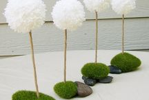 all things moss / by Cathy Walackas Estey