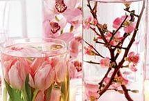 Spring decoration / by Celine Kooiman