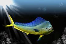 Little Fish, Big Pond / by Hobie Polarized