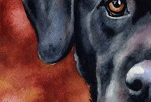 Love my Dog / by Connie Garcia