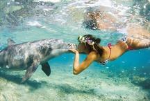 Ocean / by Stacey Redfern
