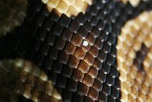 snake skin / by Laura Loras