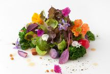 Spring Food Plating / by Bocca di Bacco