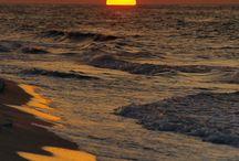 ocean / by susan bakalish