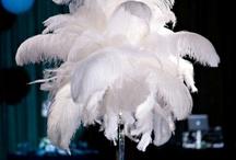 feather theme / by Kristin Smith