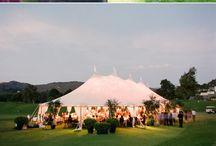 Sammy & Stephanie Wedding 8/1/15 / by Stephanie Ann Domincil