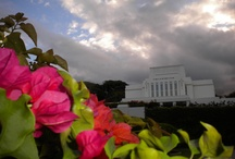 Temples visited / LDS Temples are a sacred destination.  Each has the same purpose, yet reflects the culture where it is placed.   / by Kathy Cox