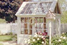 Garden ideas / by lucy webbspencer