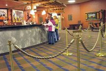 Stanchions Are Where Kids Have Fun! / by Pro Stanchions