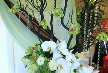 Craft Ideas / by Floral Occasions by Kelli