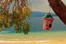 Beach Sea and Summer / by Vassilis Aggelis