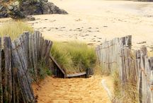 Beach = My Serenity / The place I find true peace, calm and happiness. / by Donna O'Keefe