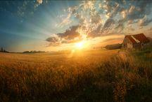 Amazing Earth / by inlu