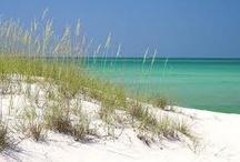 Beach Love / by Julie Dewald