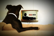 Animal #Draping / by Mad Men Draping