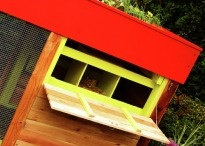Chicken Coops / by Holly Hughes