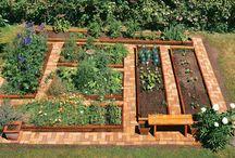 Gardens / by Michelle Jefferson