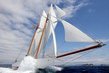 Sailing / by Doug Jackson