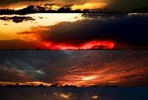 Photography / Photography  The Camera Eye www.valduncan.smugmug.com / by Vallie Duncan