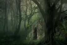 Secret Places / by Laura Beth Love