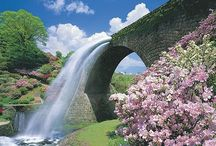 Japan! all about... / by kouji