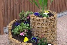 Gardening / gardening and outdoor decor / by Mary Allison James