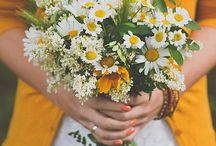 Daisy themed wedding inspiration / by Suzy Schettler