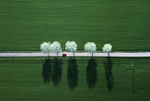 Photography / by Ronen Bekerman