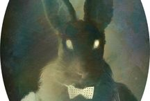 Scary Rabbits / Never turn your back on these rabbits. / by Rhonda