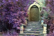 My love of Doors / by Sarah Sallee