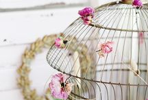 birdcages / by *Ingrid*