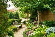 Jardins / by Maria Célia Hernandes Fachini