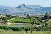 Golf / by Vive Costa del Sol