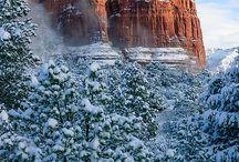 Arizona / by Margaret Irvin