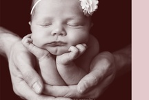 newborn photos / by Karen
