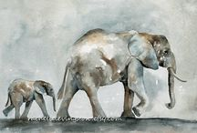 Elephant Admiration  / by Thomas Lassuy