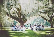 Future wedding / by Meika Anderson